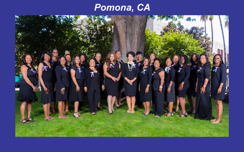 Pomona Chapter Photo - 2019-2020_ 3